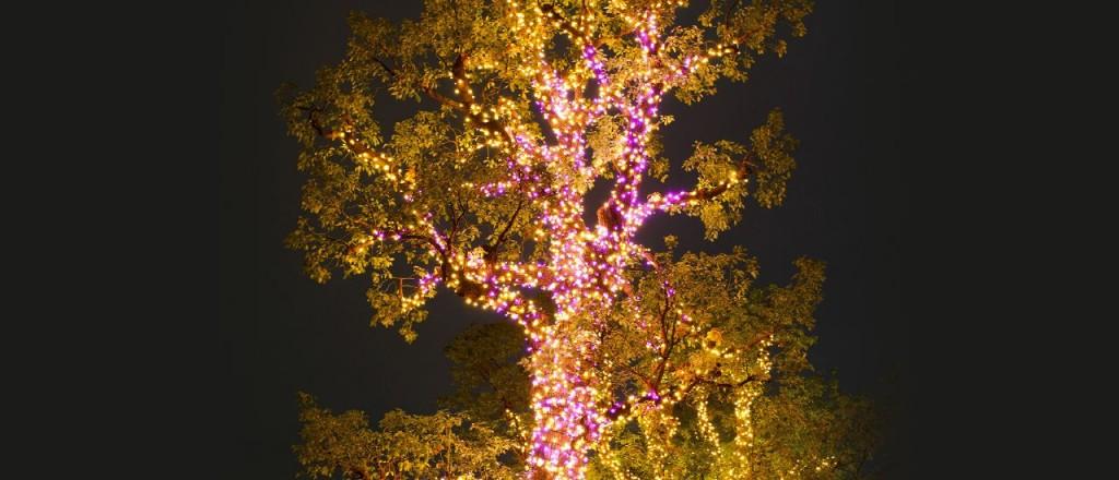 『ミッドタウン・クリスマス 2015』開催!52万個のLEDが星のように輝くイルミネーションが街全域を彩る♪3