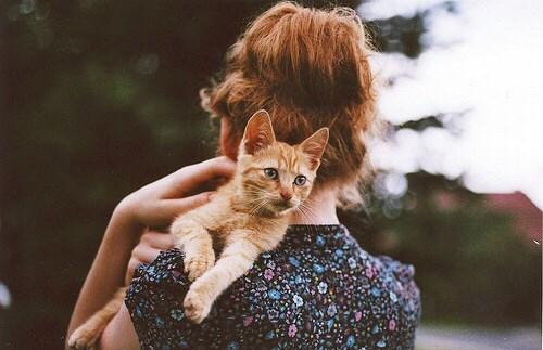 肩甲骨ダイエット|猫背改善