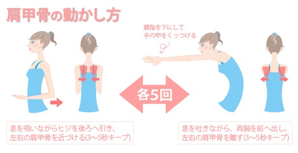 肩甲骨ダイエット|ストレッチ
